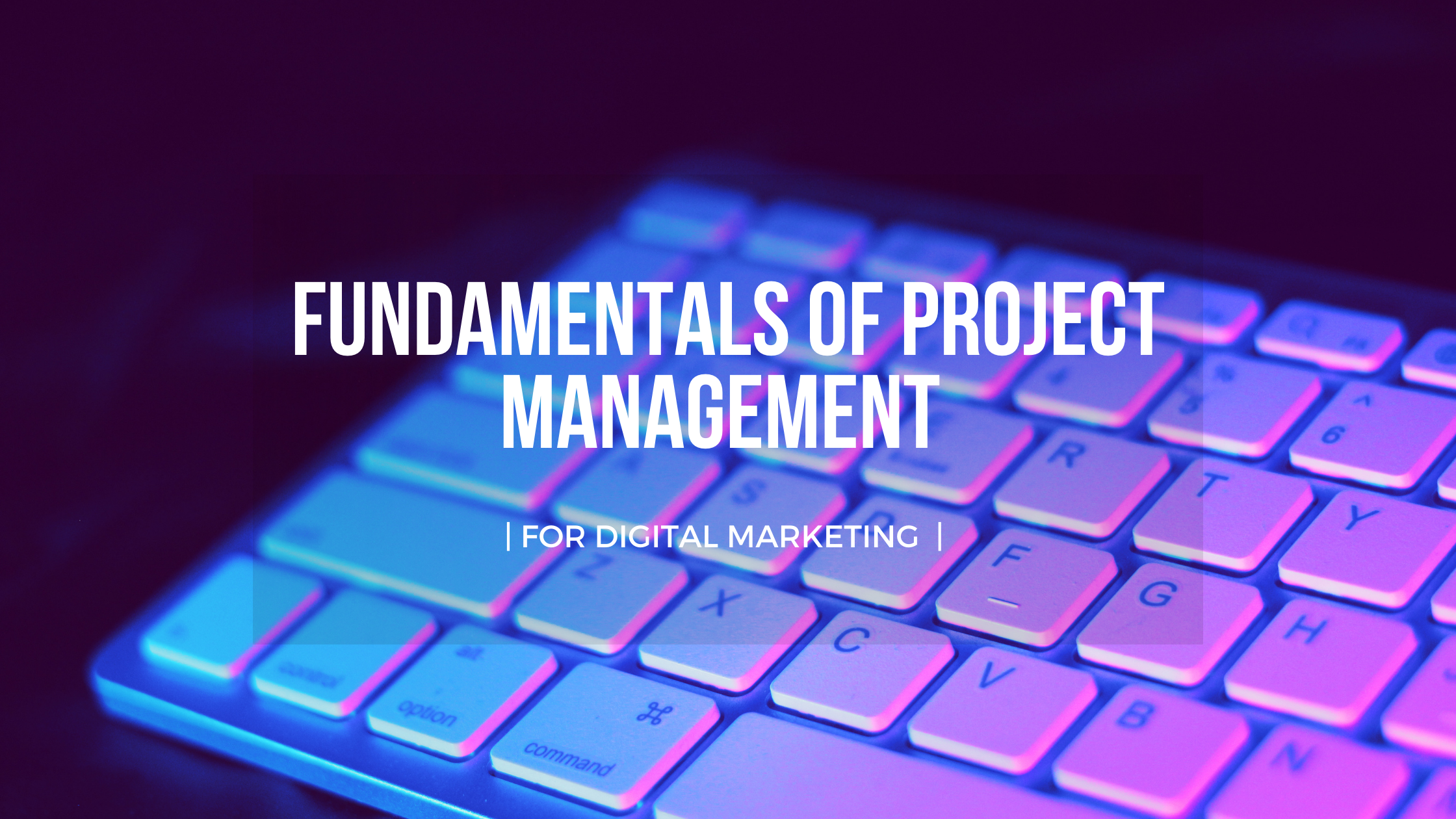 The Foundation Project Management For Digital Marketing || OAK Interlink Company Limited